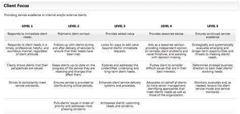 client management plan template career development goals exles world of exles