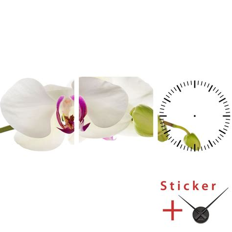 orchid wall stickers clock wall decal orchid cheap stickers nature discount