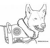 Swat Team Trermine Colouring Pages