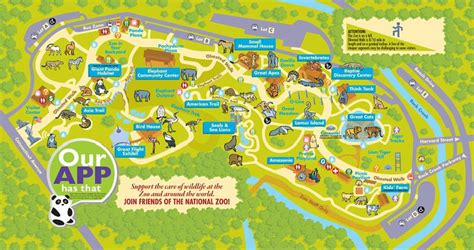 national zoo map a roaring time at the national zoo a traveling broad travel explore without
