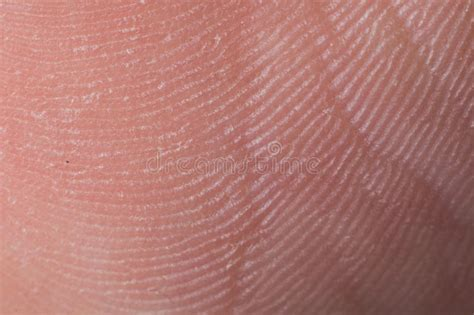 macro of clean healthy texture human skin stock photo 497410486 human skin texture up macro of brown person clean skin stock image image of