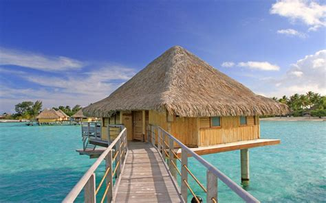 bungalow in the water water villa bungalow clear blue lagoon