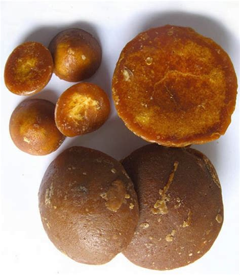 Obat Herbal Penambah Stamina Ayam Aduan komunitas ayam laga maat gula jawa untuk ayam aduan