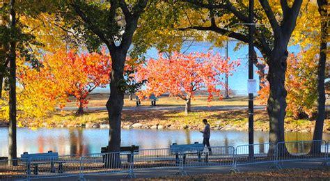 boston  november  foliage thanksgiving