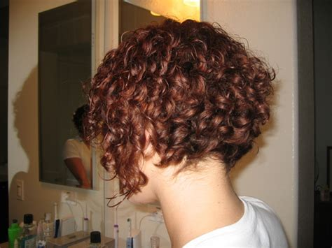 Best Curly Inverted Bob Haircuts New Hairstyles