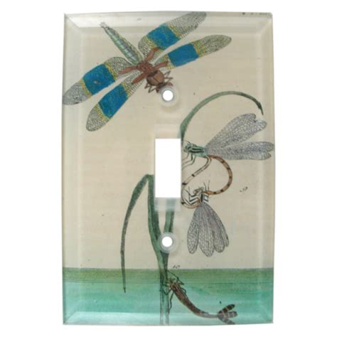 Decoupage Switch Plates - dragonfly water derian decoupage switch plate