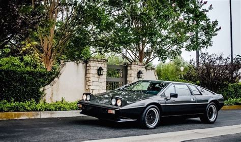 lotus esprit s1 lotus esprit s1 is available for sale on ebay drivers