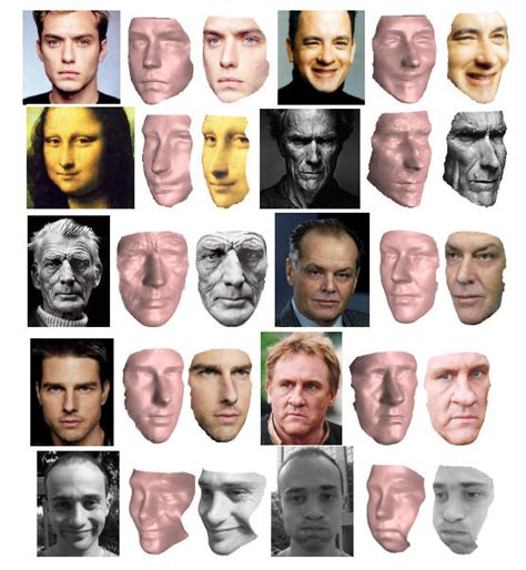 Exles Of Face Shapes | pictures of facial shapes