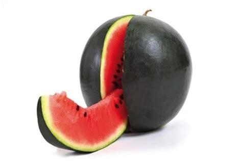 mangga  manis termasuk  buah termahal  dunia