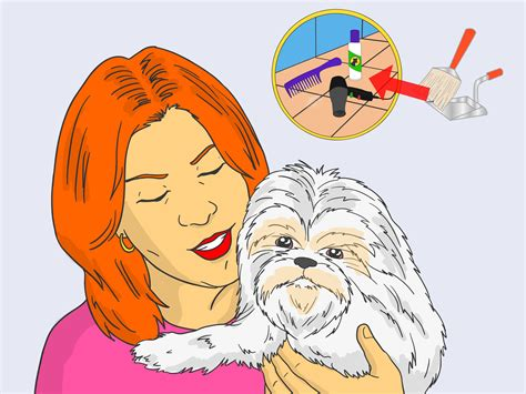 how to bathe a shih tzu how to bathe a shih tzu 15 steps with pictures wikihow