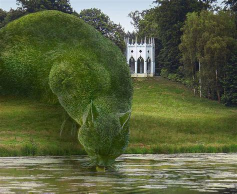topiary cat goes gaga topiary cats fft spotting trends