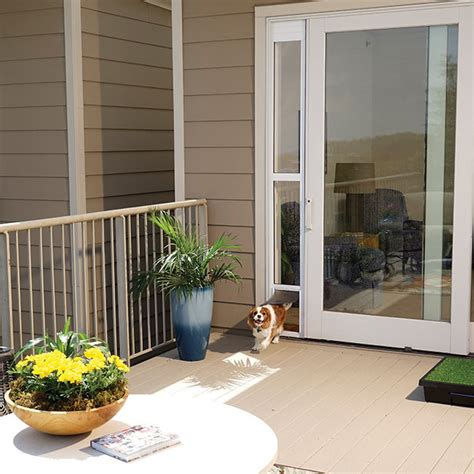 shop for sliding glass pet door for frames up to 81 quot by
