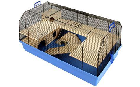 gabbie criceti gabbie per criceti quale la migliore animali pucciosi