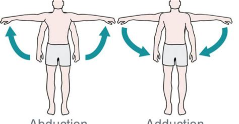 abduction l what s the difference between abduction and adduction biomechanics machine design