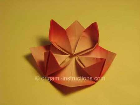 Origami Water Flower - origami water flower 28 images origami water modular