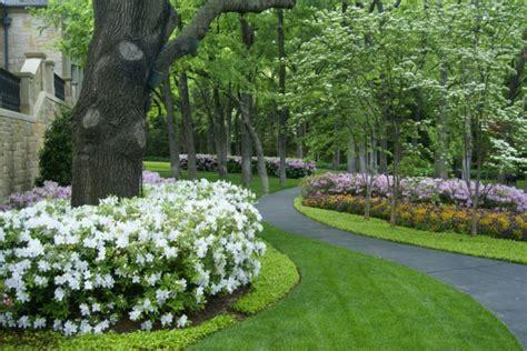 shrub garden design ideas 20 shrub garden designs ideas design trends premium