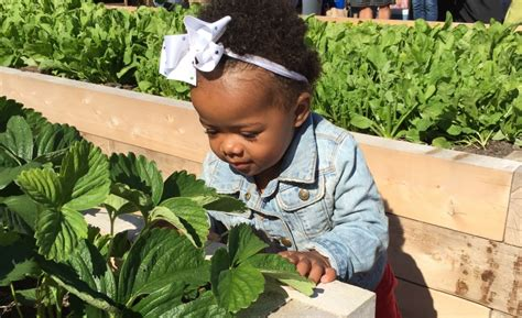 Garden Daycare Plant A Seed See What Grows Foundation7 Tips To Starting