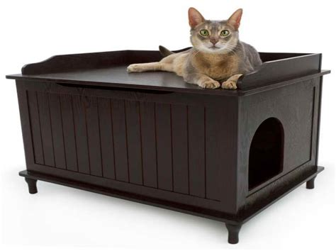 how to litter your how to make a litter box for your cat with modern furniture home interior design