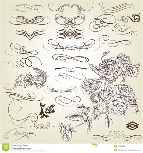 calligraphic vintage design elements vector set collection of vintage calligraphic design elements and