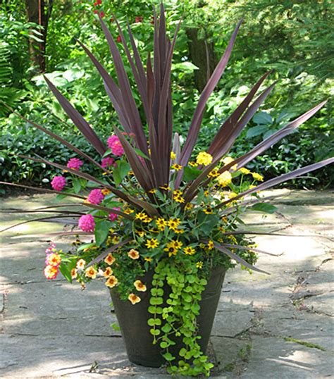 Container Flower Gardening Ideas Container Flower Garden Ideas Photograph Fernlea Flowers L