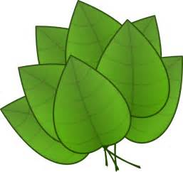 Fall Gardening Plants - leaves clip art at clker com vector clip art online royalty free amp public domain