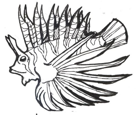 Lion Fish Outline Colouring Pages Page 2 Cliparts Co Lionfish Coloring Page