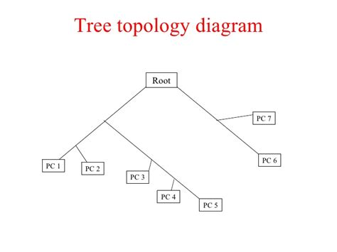 tree topology diagram networking concepts