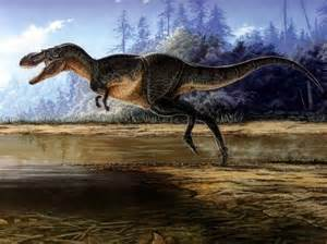 40 best images about gorgosaurus on pinterest toys