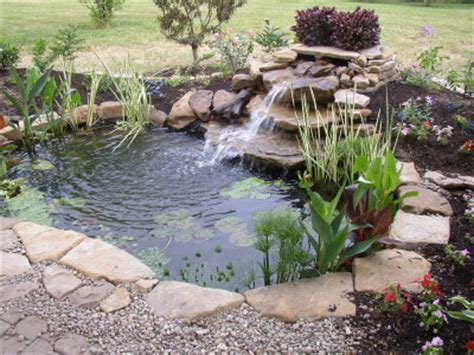backyard fish pond maintenance backyard ponds a quick springtime maintenance and care guide