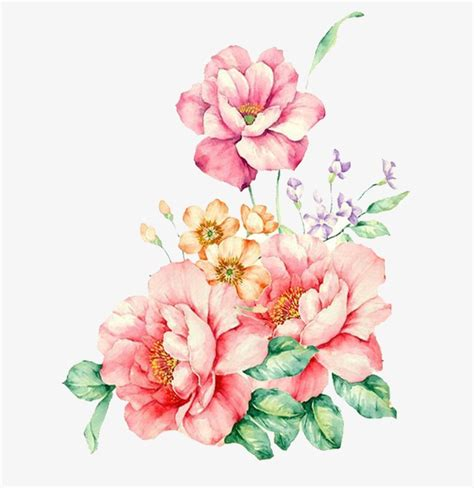 Painted Flower painted decorative pink flower flower vector