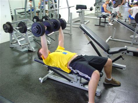 bench press safety tips dumbell bench press bench press net