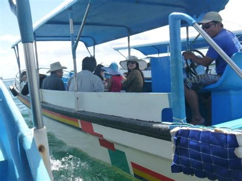 glass bottom boat reviews at glass bottom boat picture of turtle island tanjung