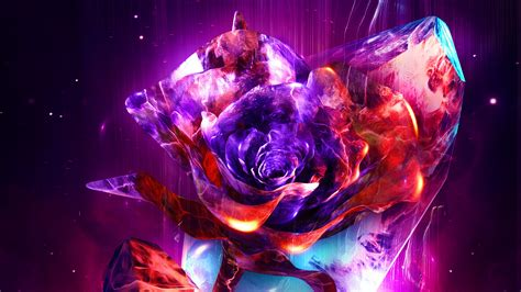 rose abstract  rose wallpapers hd wallpapers digital