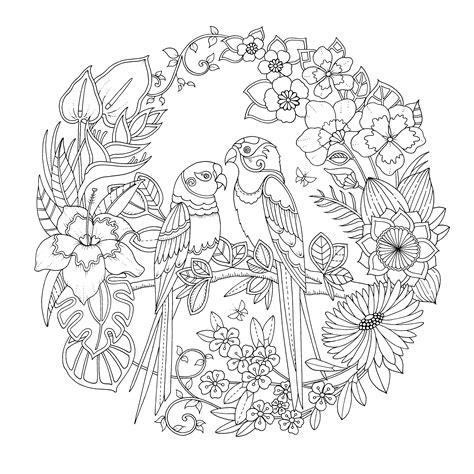 jungle coloring pages for adults 1000 images about coloring for adults on pinterest