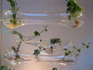hydroponic indoor herb garden hydroponic herb garden 10 easy kitchen herb garden ideas