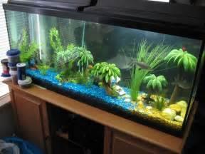 florida disneyland pictures of fish tanks decorated