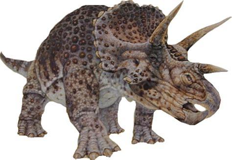 Fossil De Cuerto how do dinosaurs get their names wonderopolis