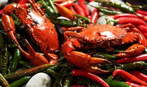seafood buffet oysters and crab seafood buffets in singapore best restaurants for free