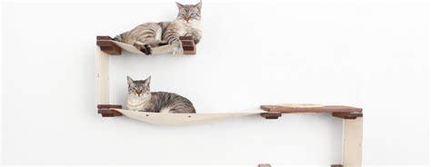 Strutture Per Gatti by Le Strutture Da Arricata Per Gatti Sono Essenziali O