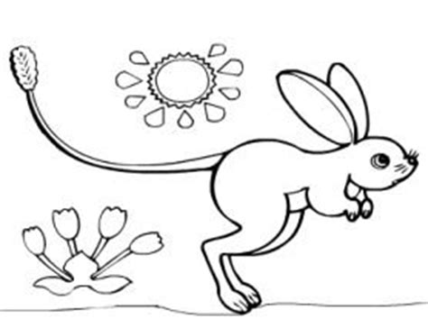 skittles pages coloring pages