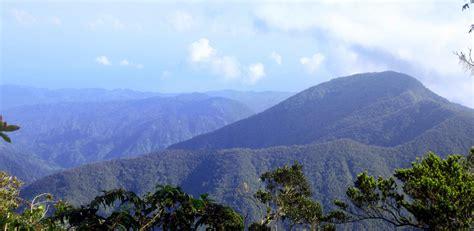 blue mountain the blue mountains jamaica