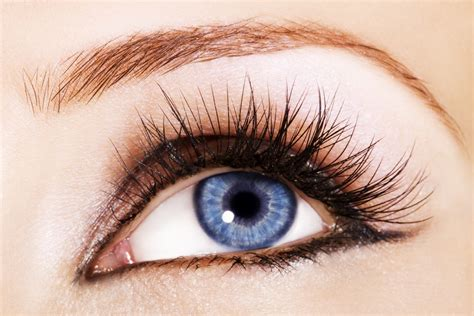 Your Lashes by Grow Your Eyelashes Trusper