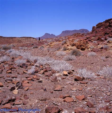 rugged scenery rugged desert scenery photo wp07222