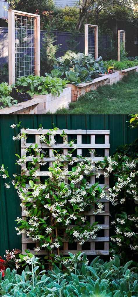 Diy Freestanding Vertical Garden 21 Easy Diy Trellis Vertical Garden Structures Page 2