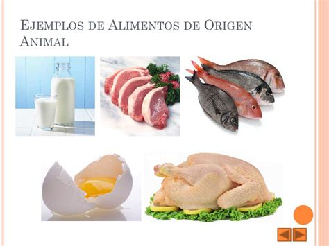 alimentos para combatir el estre imiento en ni os figuras origen de los alimentos alimentaci 243 n