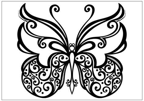 butterfly to color printable butterfly coloring pages for