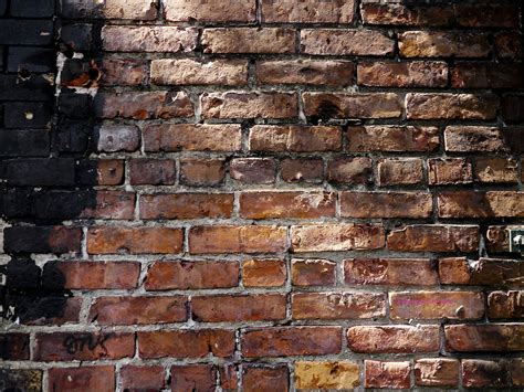 wallpaper for full wall free brick wall images page 5