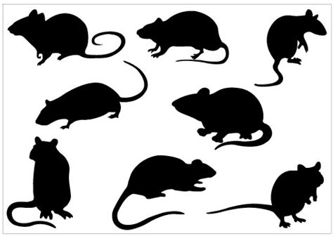 mouse silhouette template rat silhouette clipart best