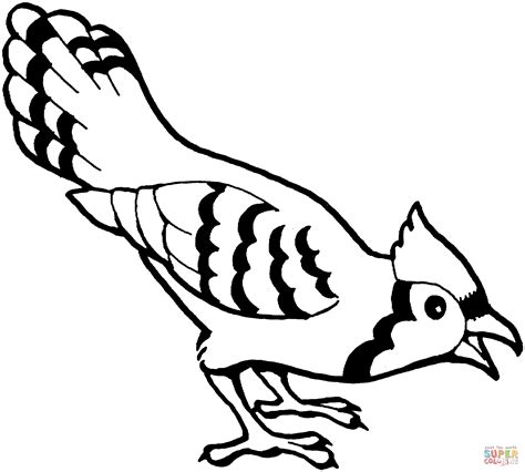 bird coloring page blue bird coloring page free printable coloring pages