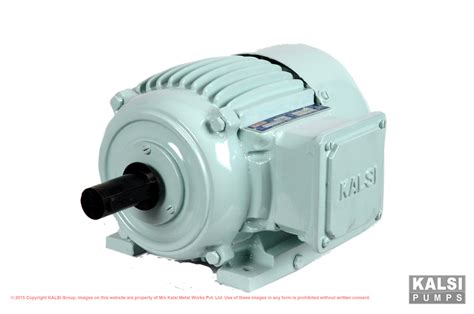 three phase induction motor squirrel cage kalsi 187 product categories 187 squirrel cage induction motors